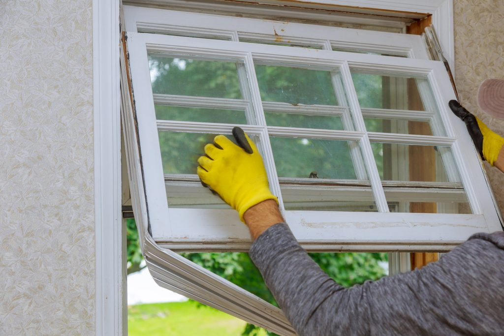 Workers preparing to master removes old wooden windows in home renovation, energy efficiency concept